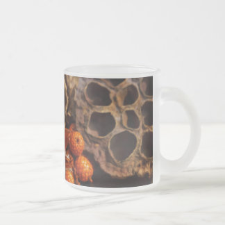 Fall Harvest Collage 10 Oz Frosted Glass Coffee Mug