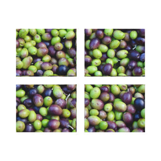 Fall Harvest in Tuscany, Olives (set of 4) Canvas Print