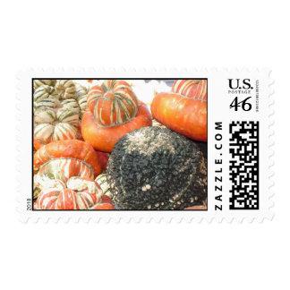 Fall Harvest Postage Stamp