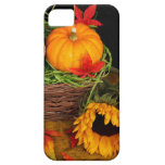 Fall Harvest Sunflowers iPhone 5 Cases