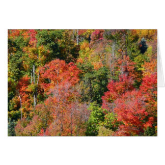 Fall Hillside Colorful Autumn Nature Photography Card