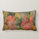 Fall Hillside Colorful Autumn Nature Photography Lumbar Pillow