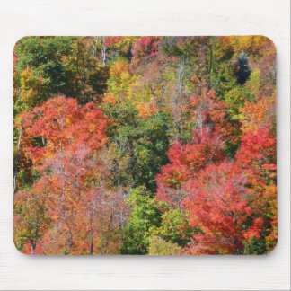 Fall Hillside Colorful Autumn Nature Photography Mouse Pad
