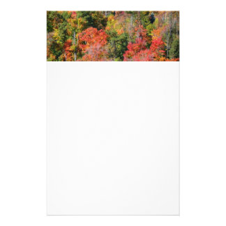 Fall Hillside Colorful Autumn Nature Photography Stationery