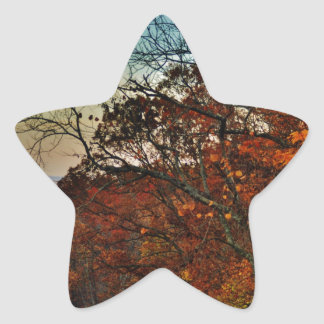 Fall Horizon Star Sticker