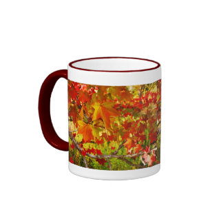 Fall in a Cup