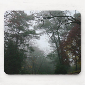 Fall in Brookline Mouse Pad