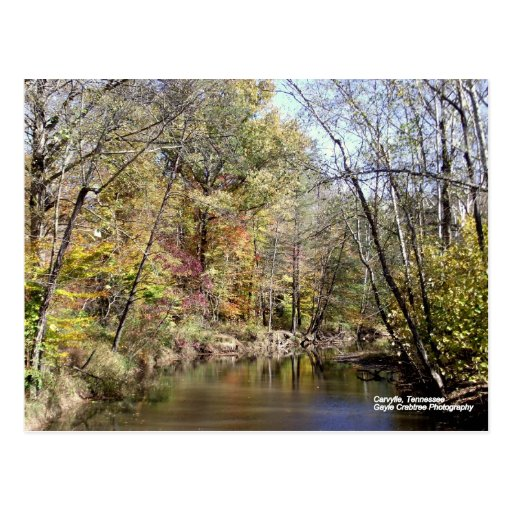 Fall in Caryville, Tennessee Postcard