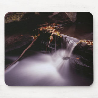 Fall in Central Park, New York Mousepad