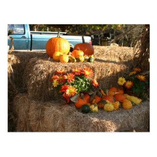 Fall in Ellington, CT. Postcard
