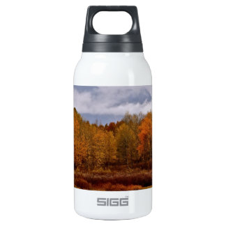 FALL IN GRAND TETON NATIONAL PARK INSULATED WATER BOTTLE