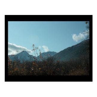 Fall in Lions Park, Leavenworth WA Mini Print Postcard