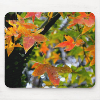 Fall in Love/Autumn Colors Mouse Pad