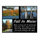 Fall In Maine Postcard