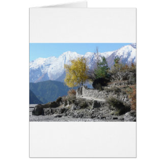 Fall in Nepal picture Card
