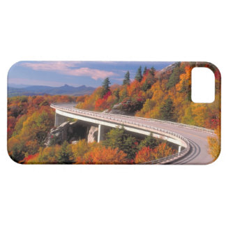 Fall in North Caroline Blue Ridge Parkway iphone iPhone 5 Cases