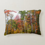 Fall in the Forest Colorful Autumn Photography Accent Pillow