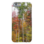 Fall in the Forest Colorful Autumn Photography Barely There iPhone 6 Case