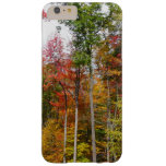 Fall in the Forest Colorful Autumn Photography Barely There iPhone 6 Plus Case
