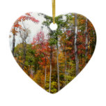 Fall in the Forest Colorful Autumn Photography Ceramic Ornament