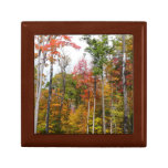 Fall in the Forest Colorful Autumn Photography Gift Box