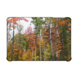 Fall in the Forest Colorful Autumn Photography iPad Mini Case