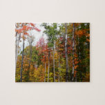 Fall in the Forest Colorful Autumn Photography Jigsaw Puzzle
