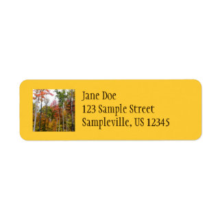 Fall in the Forest Colorful Autumn Photography Label
