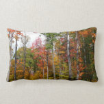 Fall in the Forest Colorful Autumn Photography Lumbar Pillow
