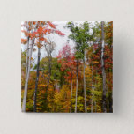 Fall in the Forest Colorful Autumn Photography Pinback Button