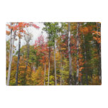 Fall in the Forest Colorful Autumn Photography Placemat