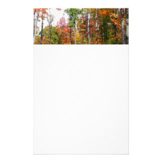 Fall in the Forest Colorful Autumn Photography Stationery