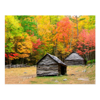 Fall in the Great Smoky Mountains Post Card