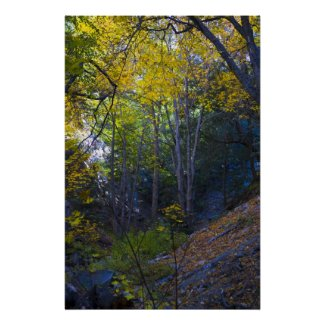 Fall in the Mountains 2 Posters
