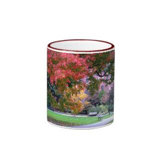 Fall in the Public Garden Ringer Coffee Mug