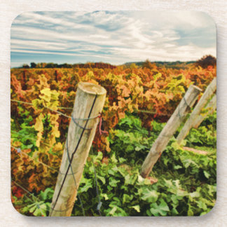 Fall in the Vineyard Sky Drink Coaster