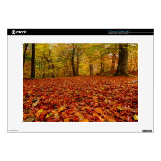 Fall in the woods skin for laptop
