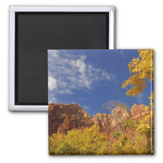 Fall In Zion Magnet