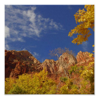 Fall in Zion Poster