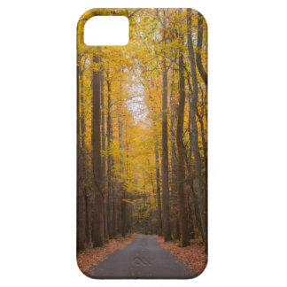 Fall is in the Air iPhone SE/5/5s Case