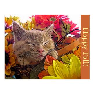Fall Kitty Cat Kitten Napping, Face, Flower Basket Postcard