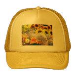 Fall Kitty Cat Kitten Trucker Hat