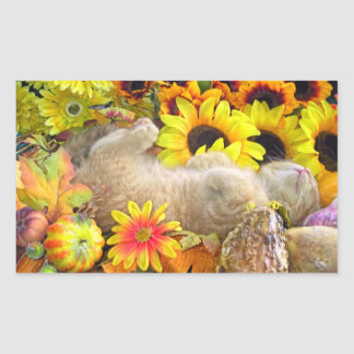 Fall Kitty Cat Rectangular Sticker