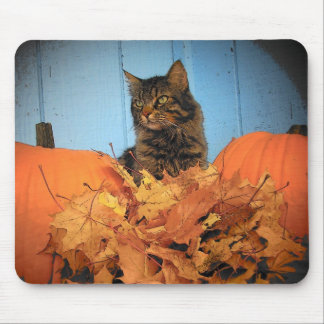 Fall Kitty Mouse Pad