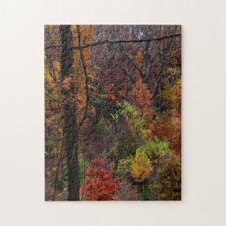 Fall Landscape in Arkansas Jigsaw Puzzel Puzzle