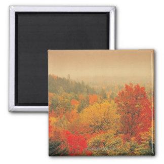Fall landscape, New Hampshire, USA 2 Inch Square Magnet