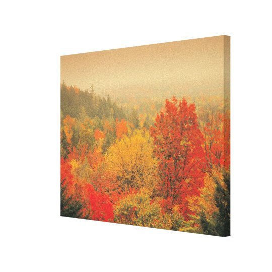 Fall landscape, New Hampshire, USA Canvas Print