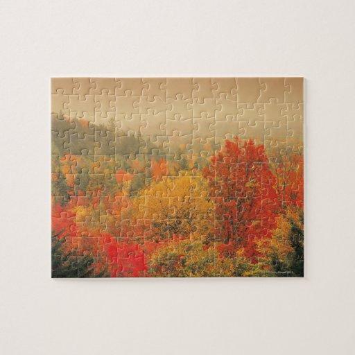 Fall landscape, New Hampshire, USA Jigsaw Puzzles