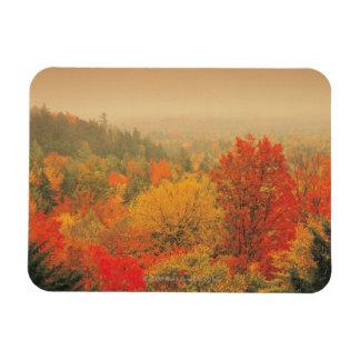 Fall landscape, New Hampshire, USA Rectangular Photo Magnet