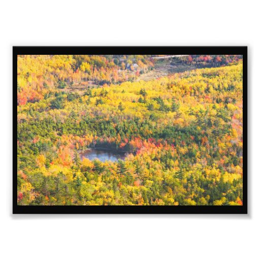 Fall Landscape With Pond in Acadia National Park Art Photo